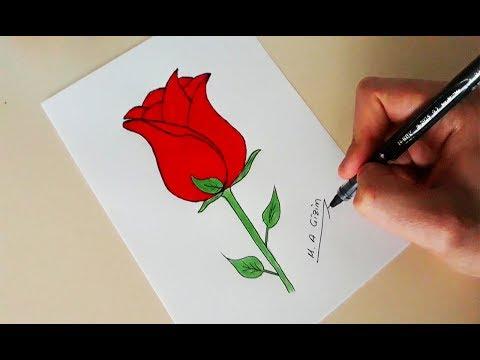 Gul Nasil Cizilir Adim Adim Kolay Gul Cizimi How To Draw A Rose