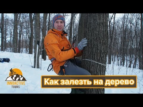 Как забраться на дерево с помощью верёвки