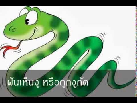 ฝันเห็นงู หรือถูกงูกัด หมายถึงอะไร (เลขเด็ด)