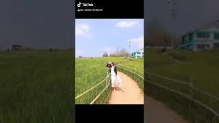 Xuân 2019 고창 청보리밭 축제