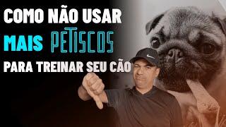 USE O PETISCO DA FORMA CORRETA