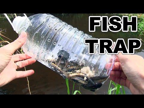 Homemade fish trap for Diy fish trap
