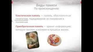видео Виды памяти в психологии