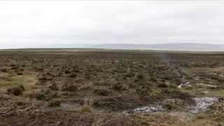 Ilkley Moor: Fire control, Heather regeneration and Moorland management