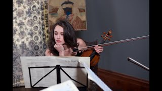 Pachelbel Canon Stringspace Orchestra