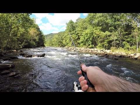 TROUT FISHING With Spinners And Trout Magnets