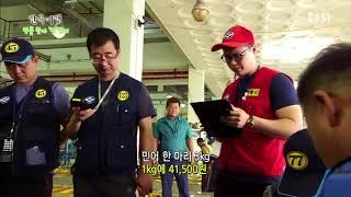 한국기행 - Korea travel_명물찾아 섬만리 5부 섬남섬녀 열전_#001