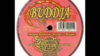 "Palefield Mountain - Dream to Become (Eternal Buddja Trip Mix by Franky ""The Dr"" Jones)"