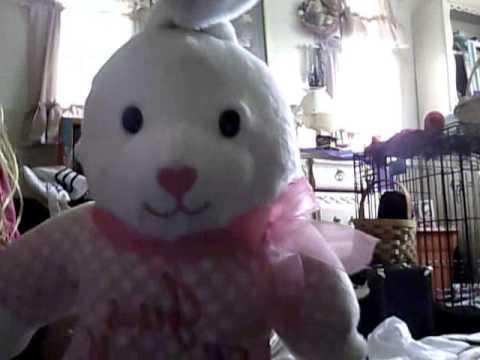 singing bunny jeus loves me