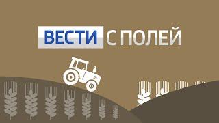 Вести с полей: современные технологии в сельском хозяйстве