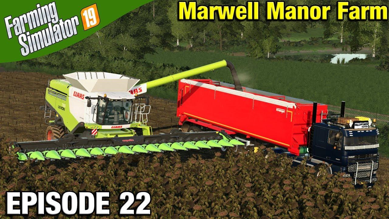 SUNFLOWER HARVESTING Farming Simulator 19 Timelapse