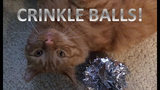 Let's play crinkle ball!