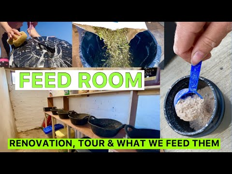 FEED ROUTINE/RENOVATION/TOUR | What We Feed Our Horses!