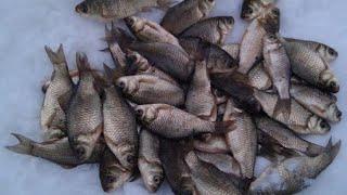 рыбалка на озере чаны отчёт рыбалки за 22 марта 2021г
