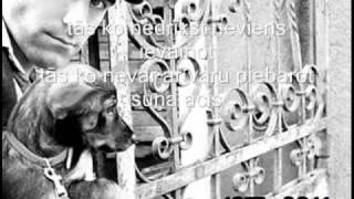 Mārtiņš Freimanis-Suns