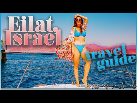 EILAT ISRAEL TRAVEL VLOG   EPIC THINGS TO DO   Swimming W/ Dolphins