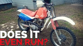 Buying A Trashed Honda XR80 For Cheap! [Ep.1]