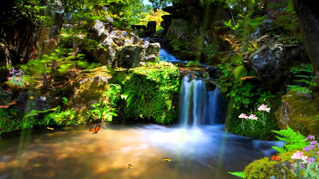 Animated Desktop Wallpaper Free Download For Windows 8 Just Paradise Animated Wallpaper Http Www