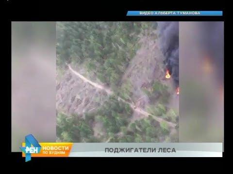 Поджигателей тайги заметил лётчик во время авиапатрулирования в Черемховском районе