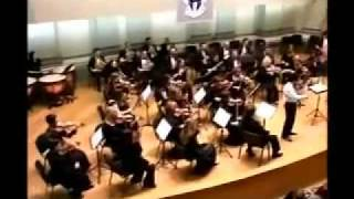 Tchaikovsky Violin Concerto in D Major, Op . 35: 1st Movement (Part 1)  - Kamran Omarli