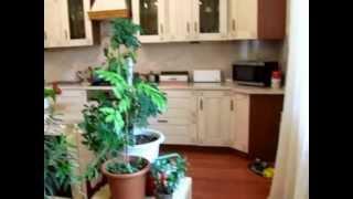 Кокошкино, дом 270 м2 на 12 сотках  Баня и гостевой дом