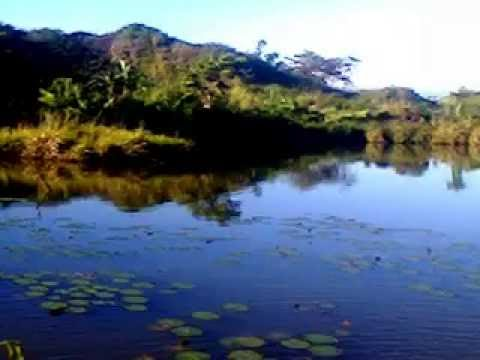 francis lago fishpan