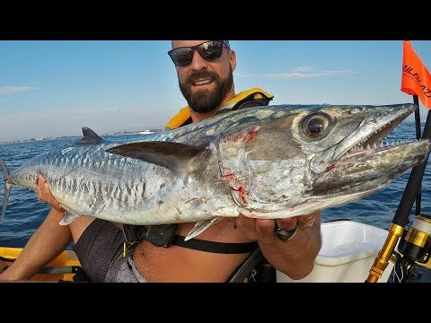 Offshore kayak fishing charter delray beach and boynton for Delray beach fishing