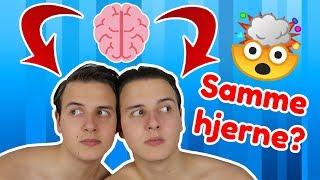 Har Vi Den Samme Hjerne!? (Tvillinge Tag)