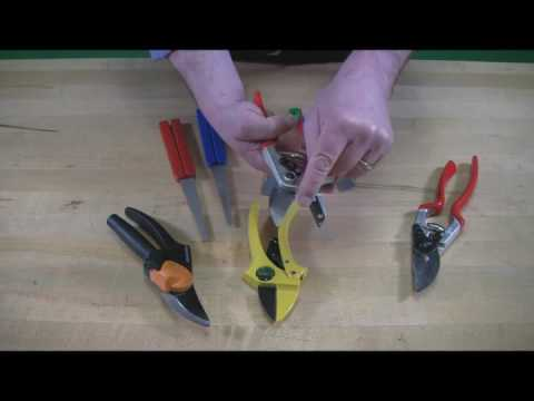 Video of Pruner Sharpening with DMT®
