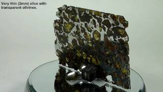 Meteorite BRAHIN pallasite transparent slice