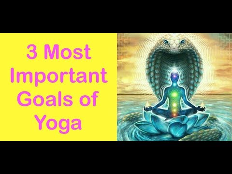 What S The Importance Of Yoga In Modern Life Nymphaeum Life