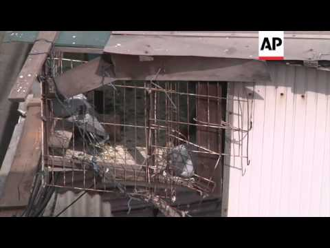Empty stalls in poultry market as death toll from new bird flu rises