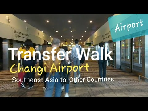 Transfer Walk Changi Airport Singapore | Terminal 2 to Terminal 3 by Skytrain through Jewel