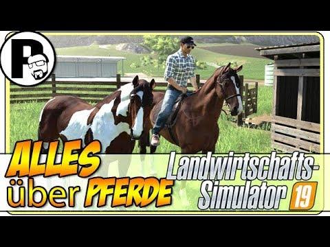 LS19: ALLES über die Pferde und den Pferdestall | #Pecihof [Landwirtschafts Simulator 19][FS19]