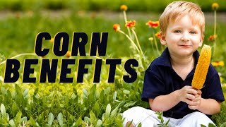 Nutrition Facts and Health Benefits of Corn