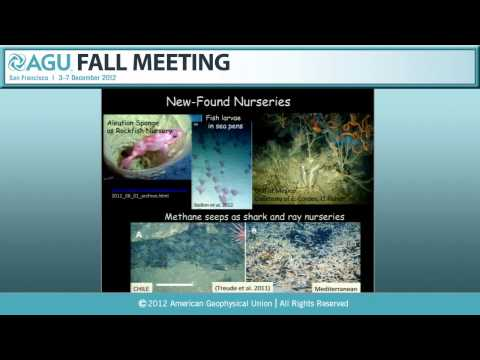 Sverdrup Lecture: OS53F. Deep Margins Under Pressure - 2012 AGU Fall Meeting