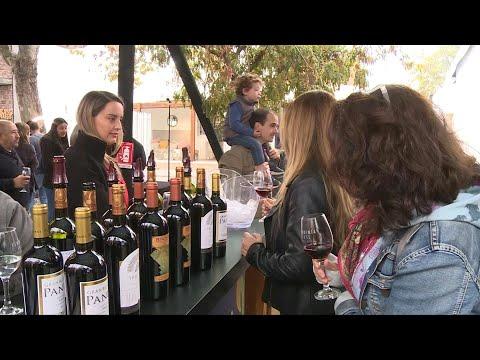 Chile Impulsa Sus Vinos Premium Para Aumentar Sus Precios En El Mercado Mundial