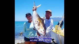 MEXICAN MINUTE LA PAZ FISHING REPORT from Tailhunter Sportfishing for Week of June 10-17, 2018