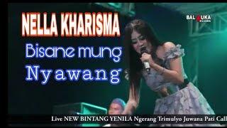 Nella Kharisma, Bisane Mung Nyawang