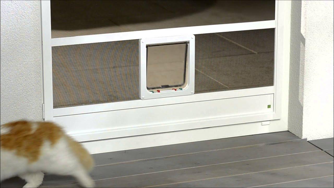 gessler fliegengitter sonderloesungen katzenklappe youtube. Black Bedroom Furniture Sets. Home Design Ideas