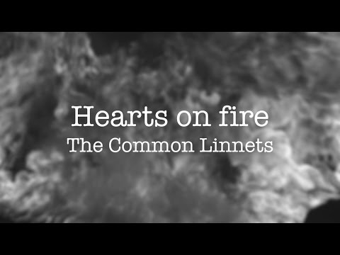 Hearts On Fire - The Common Linnets Lyrics