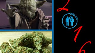 Are We All Capable Of The Force? How Many Died From Marijuana In 2015?! And New Years Resolutions!