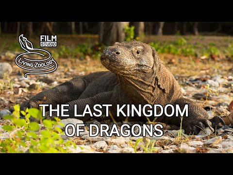 Кадры из фильма Зоология
