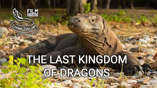 The Last Kingdom of Dragons - film about Komodo by Living Zoology film studio
