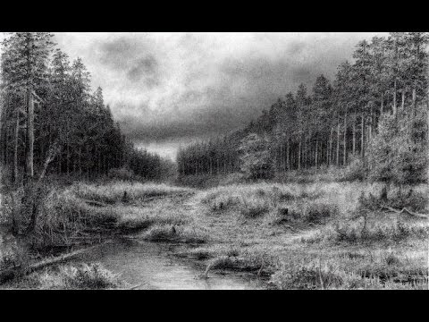 Drawing Pencil | How To Draw a Road in a Pine Forest With Pencil