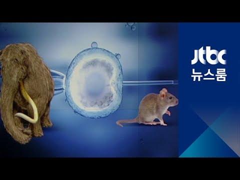 매머드 복제, 생쥐 미스터리…'정반대 주장' 짚어보니