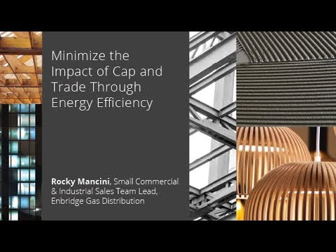 Minimize the Impact of Cap and Trade Through Energy Efficiency