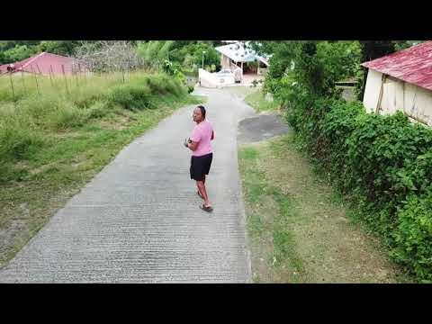 Mavic Pro Dji Drone Martinique Caribbean Island Beach and Free by Ti Poulè Little Chiken