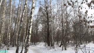 Weather in Moscow 04.04.2012(Погода в Москве 4 апреля 2012. Видео снято в Лианозовском парке. Camera used: Canon PowerShot SX130 IS., 2012-04-07T21:13:50.000Z)
