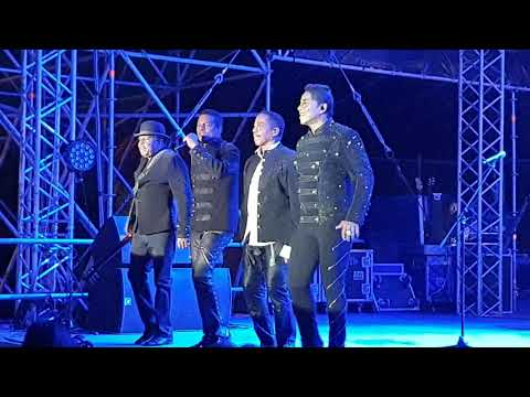 THE JACKSONS 2019-(HD)Can You Feel It/Blame In On The Boogie-2019.08.01.-Paloznak